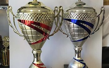 Two trophies